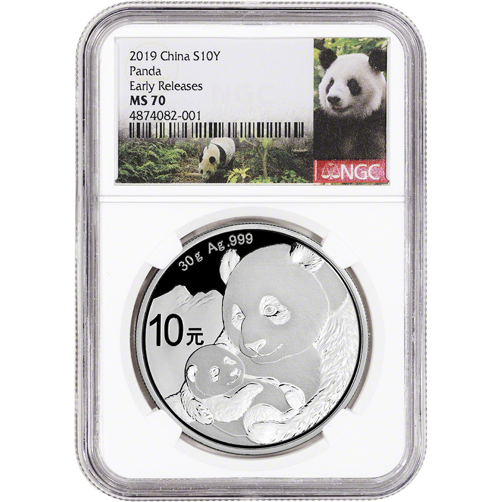 NGC MS70 2019 China Silver Panda 30 g 10 Yuan
